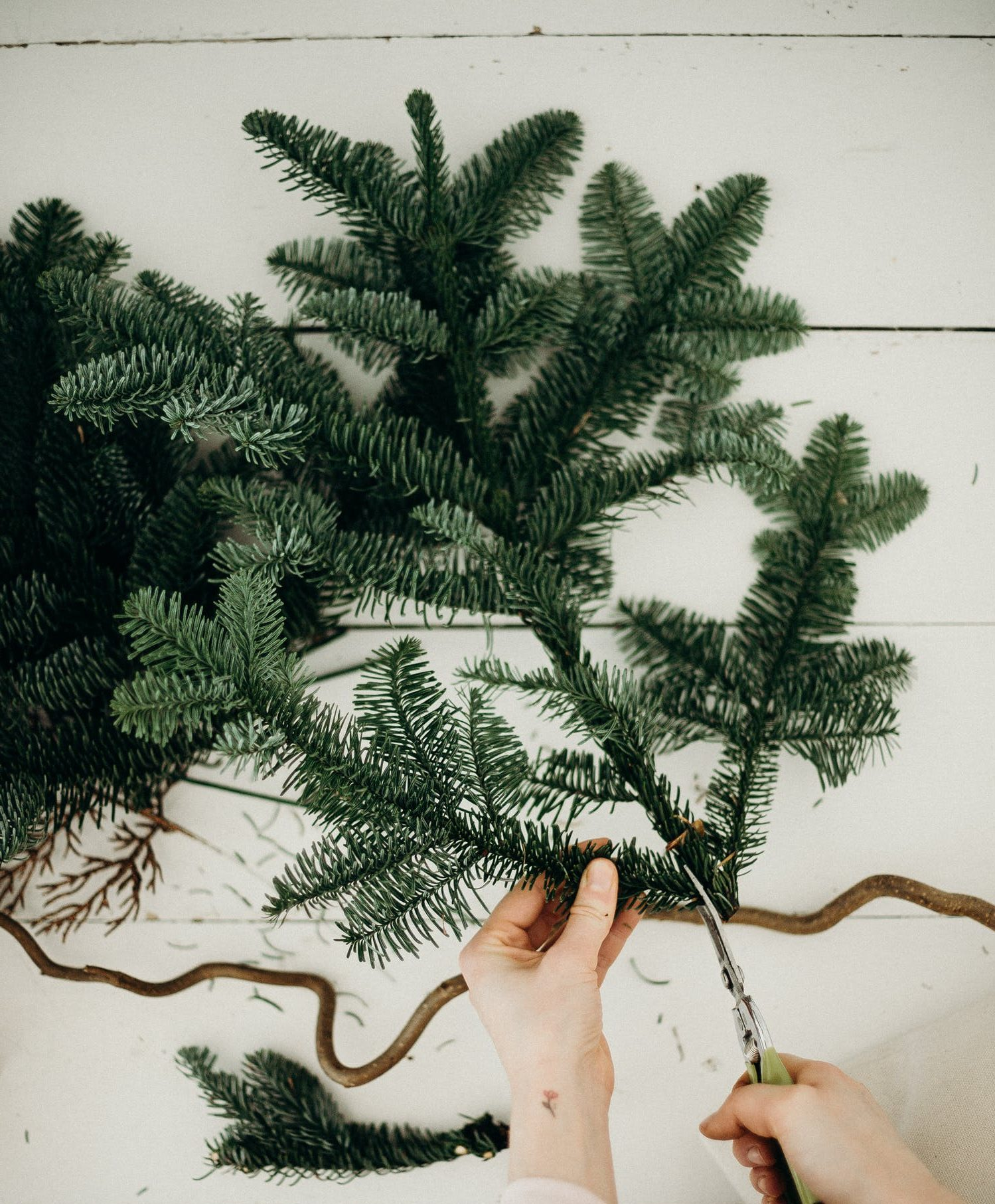 Zenith_SustainableChristmas_Tree